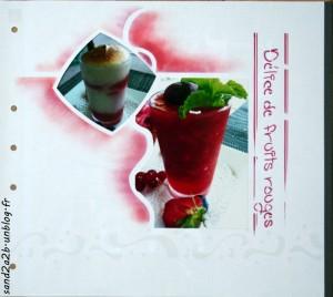 Délice de Fruits Rouges dans Gabarit Vitrail img_2347-300x268